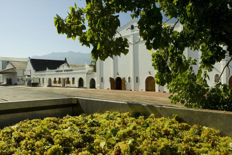u_1410625264_robertson-winery7