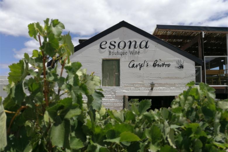Esona4